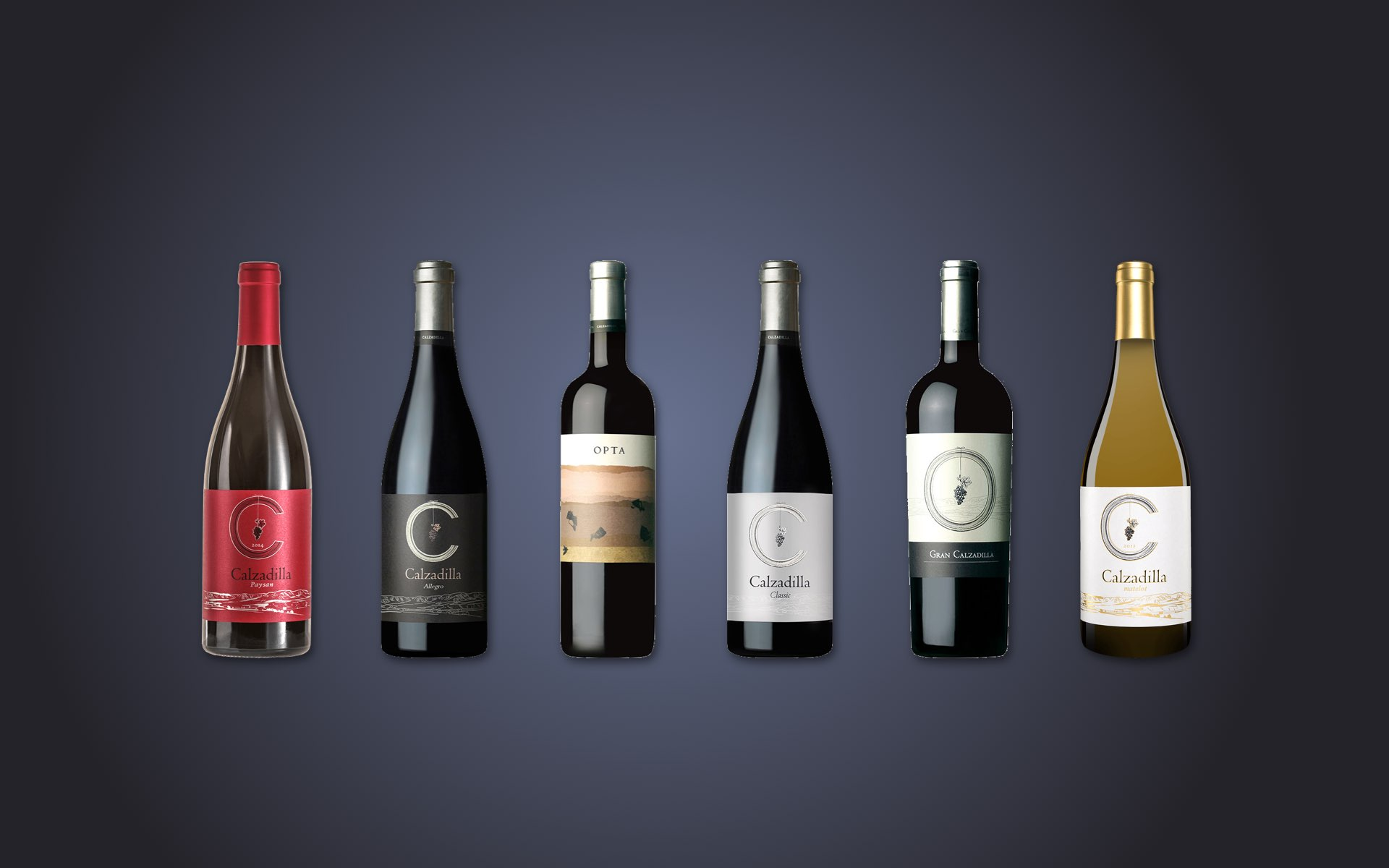 Discover our unique wines